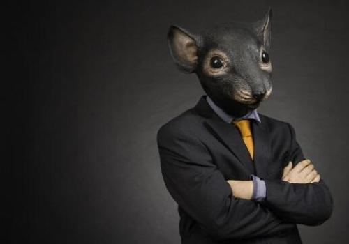 股票老鼠仓犯法吗?老鼠仓什么意思?